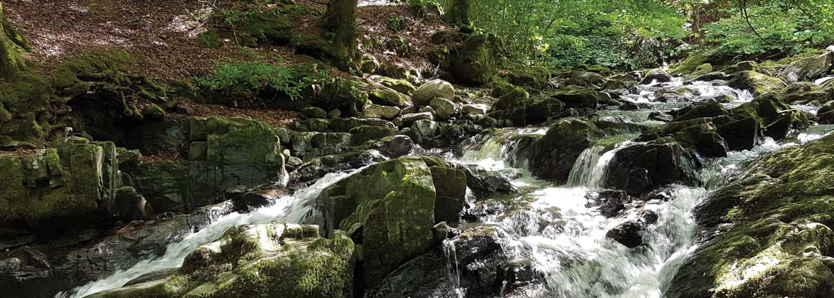 The Birks o Aberfeldy Waterfall on the fantastic nature trail walk