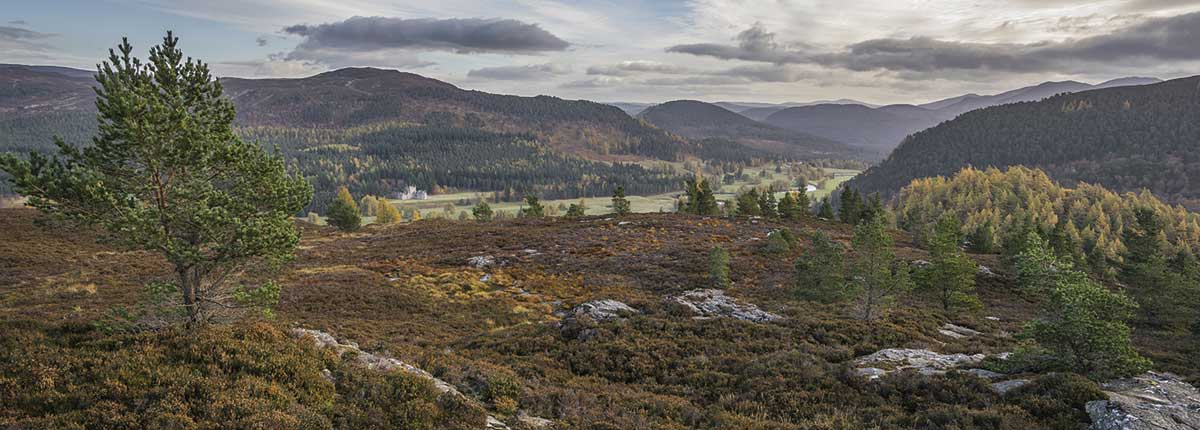 Creag Choinnich (Braemar) Walking Tours Scotland