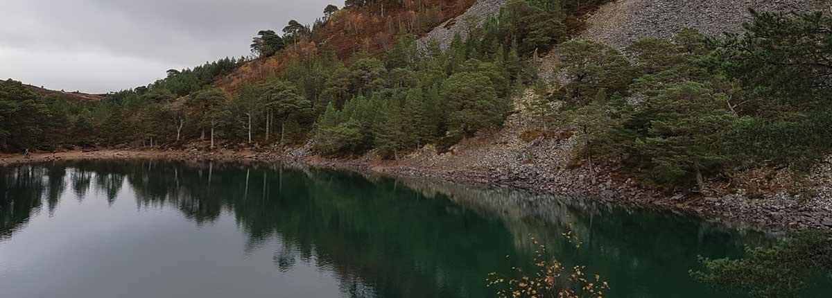 Allt Mor Glenmore Forest and woodland walks