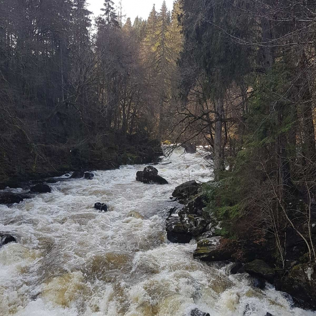 The Black Linn on the River Braan in the Dunkeld Hermitage Highland Perthshire