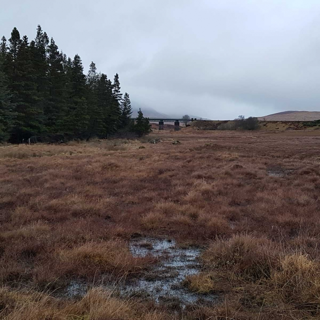Rannoch Moor Walking Trail