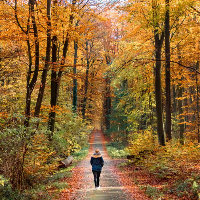 Walking meditations and mindful walking on tour